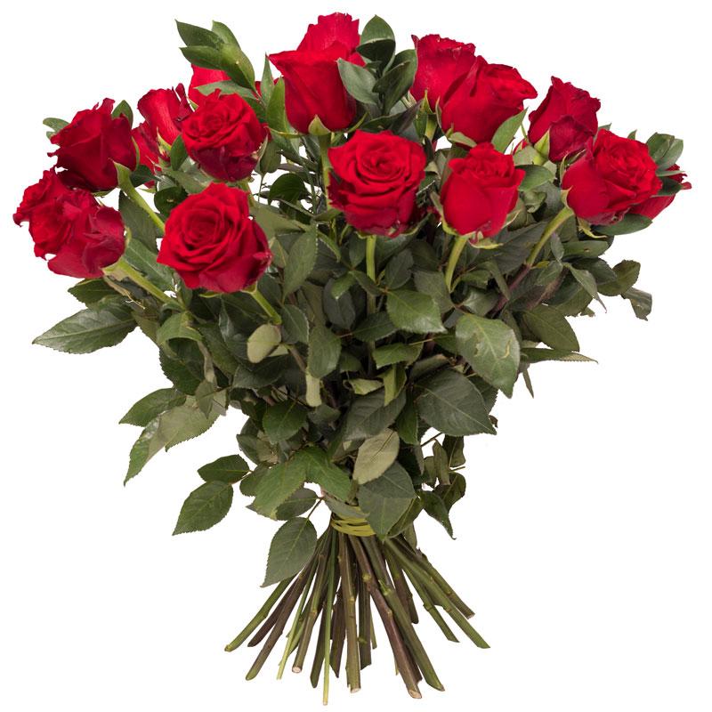 Miłosne róże Laflora