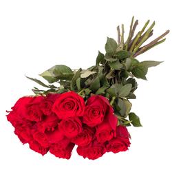 Róże dla Zakochanych