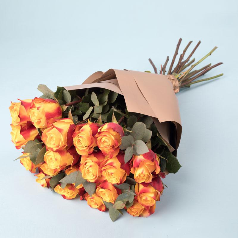 Róże herbaciane Kwiaty