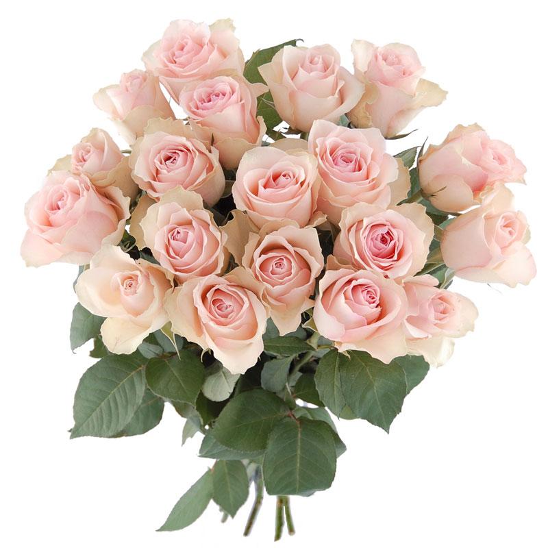 Bukiet białych róż Kwiaty