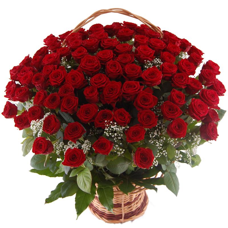 100 róż w koszu Kwiaty